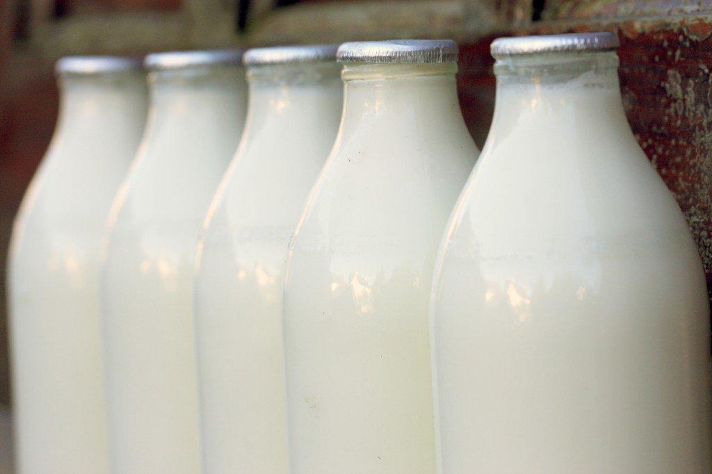 Как выбрать молоко в кофейню?